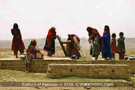 Culture of Pakistan (309)