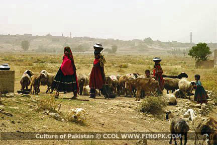 Culture of Pakistan (5)